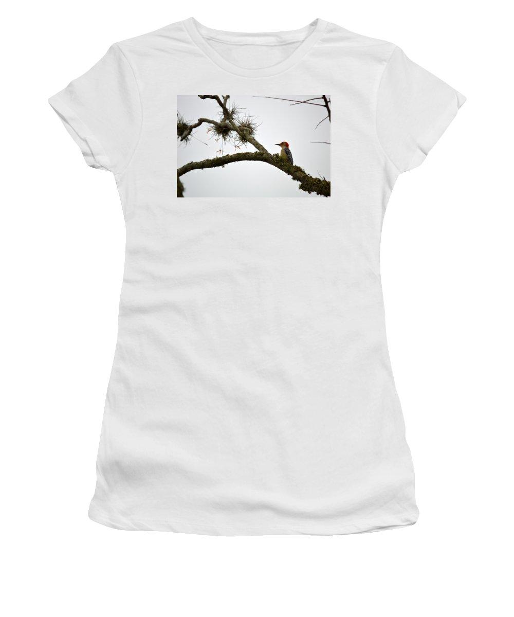 Woodpecker Women's T-Shirt featuring the photograph On A Limb by Linda Kerkau