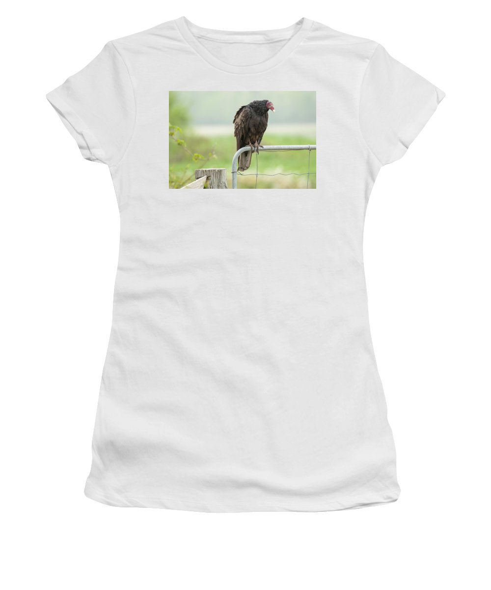 Bird Women's T-Shirt (Athletic Fit) featuring the photograph On The Fence by Richard Kitchen