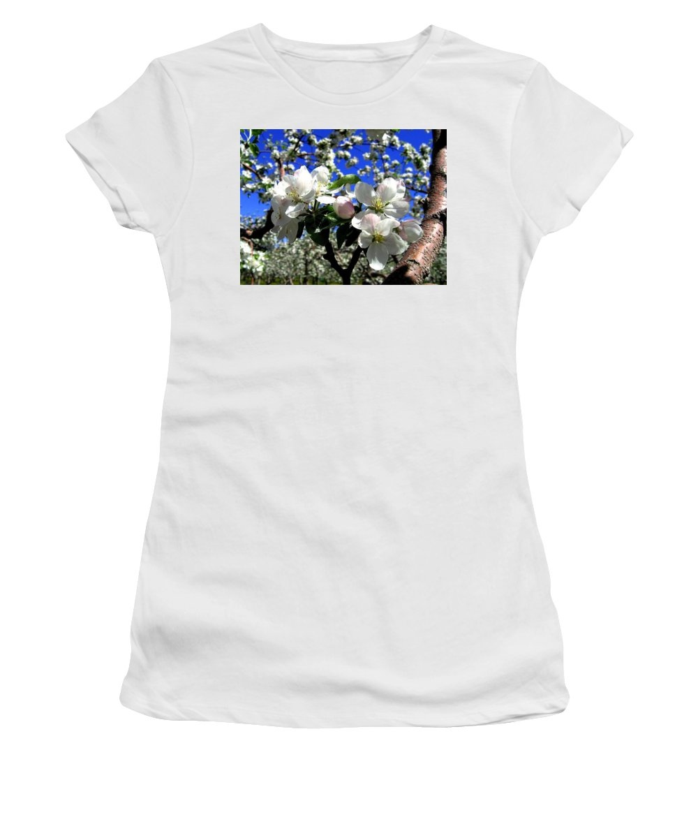 Apple Blossoms Women's T-Shirt (Athletic Fit) featuring the photograph Orchard Ovation by Will Borden