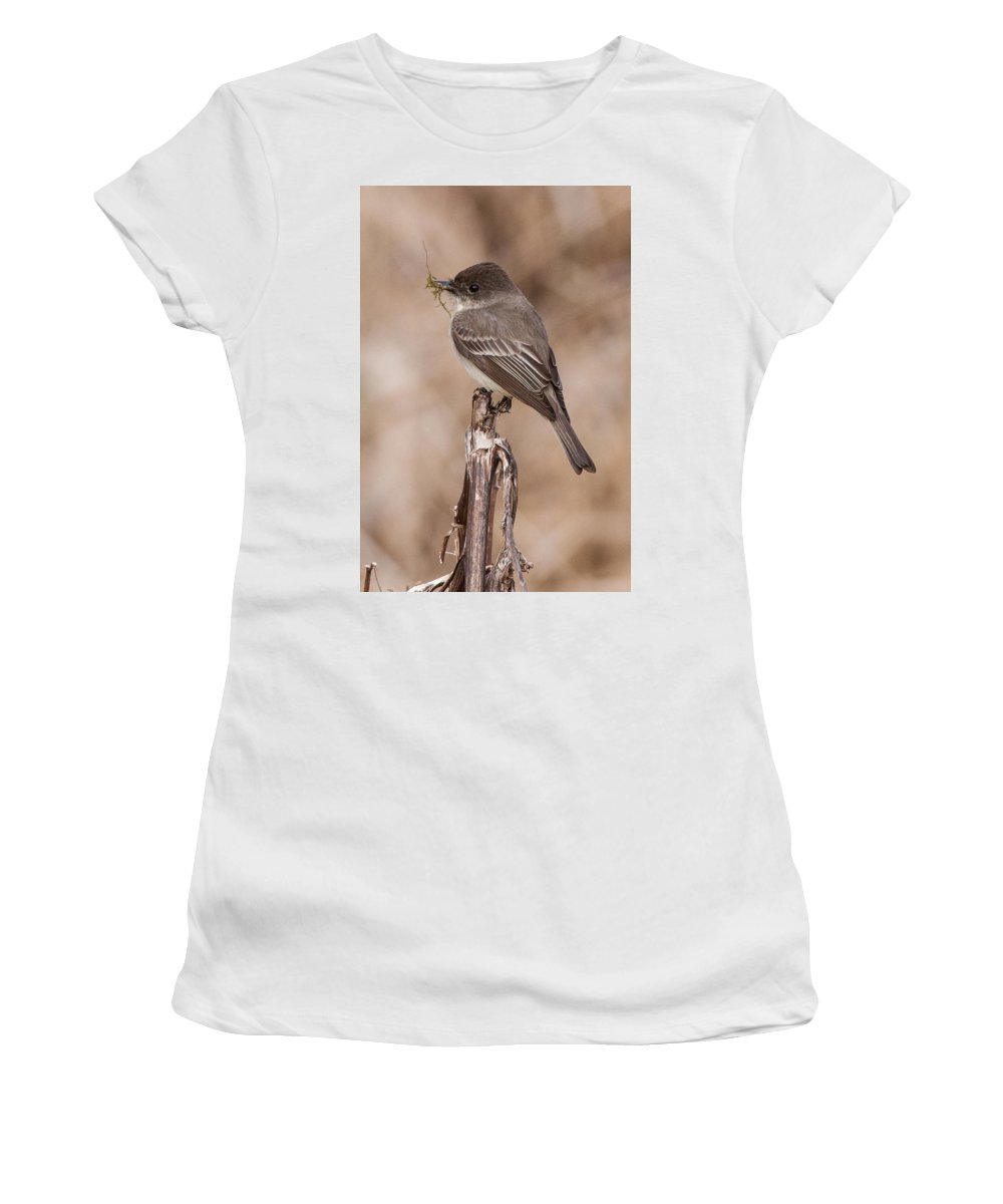 Albion Hills Women's T-Shirt (Athletic Fit) featuring the photograph Phoebe Nesting by Richard Kitchen