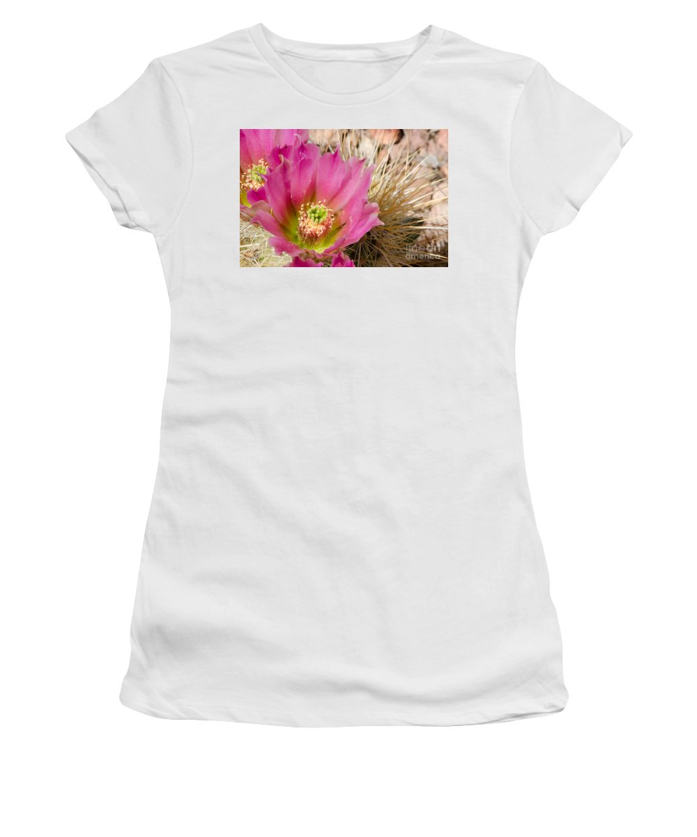 Pink Women's T-Shirt (Athletic Fit) featuring the photograph Pink Cactus Flower by Michael Moriarty