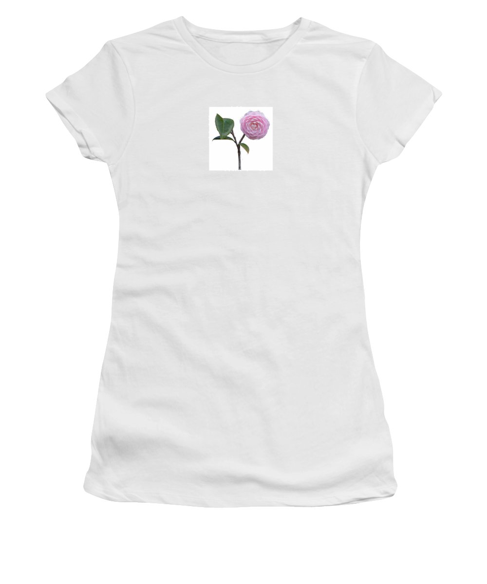 Flower Women's T-Shirt featuring the photograph Pink Camellia On White by John M Bailey