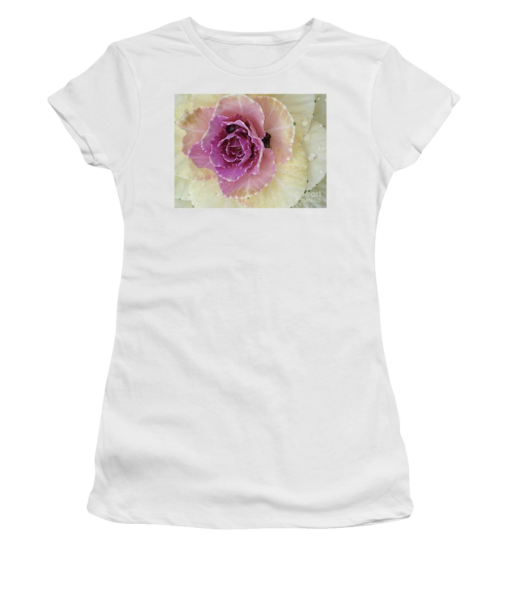 Cabbage Plant Women's T-Shirt (Athletic Fit) featuring the photograph Potchen's Palace by Joseph Yarbrough