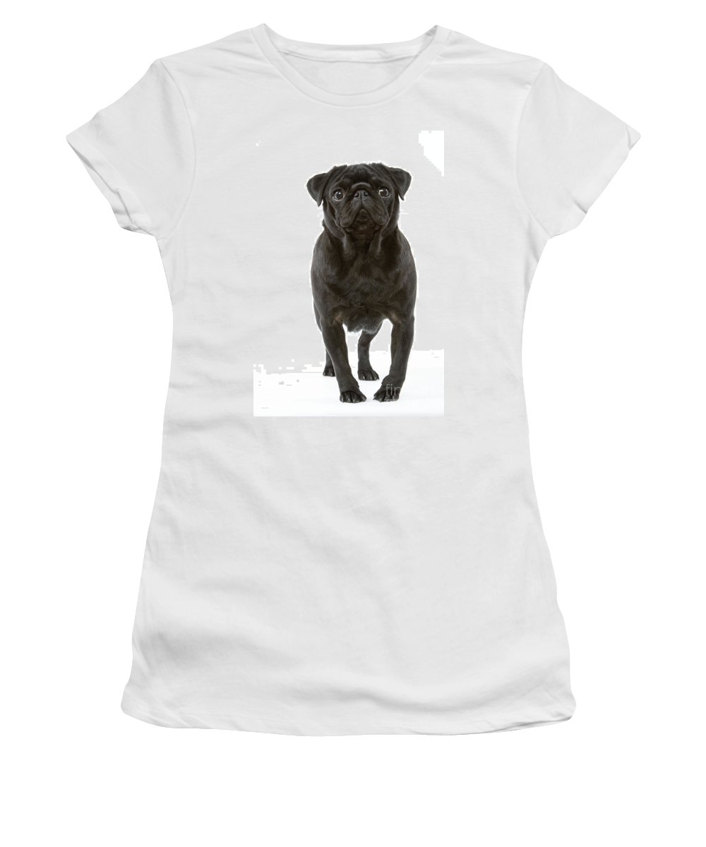 Pug Women's T-Shirt (Athletic Fit) featuring the photograph Pug Dog by Jean-Michel Labat