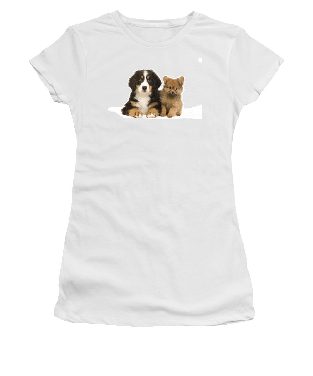 Pomeranian Women's T-Shirt (Athletic Fit) featuring the photograph Puppies by Jean-Michel Labat