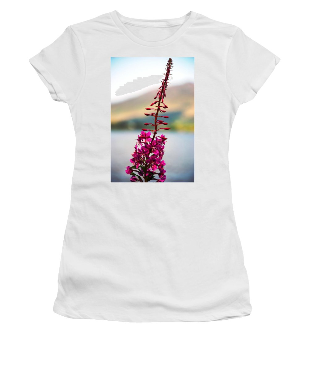 Plant Women's T-Shirt featuring the photograph Reaching To The Sky by Charlie and Norma Brock