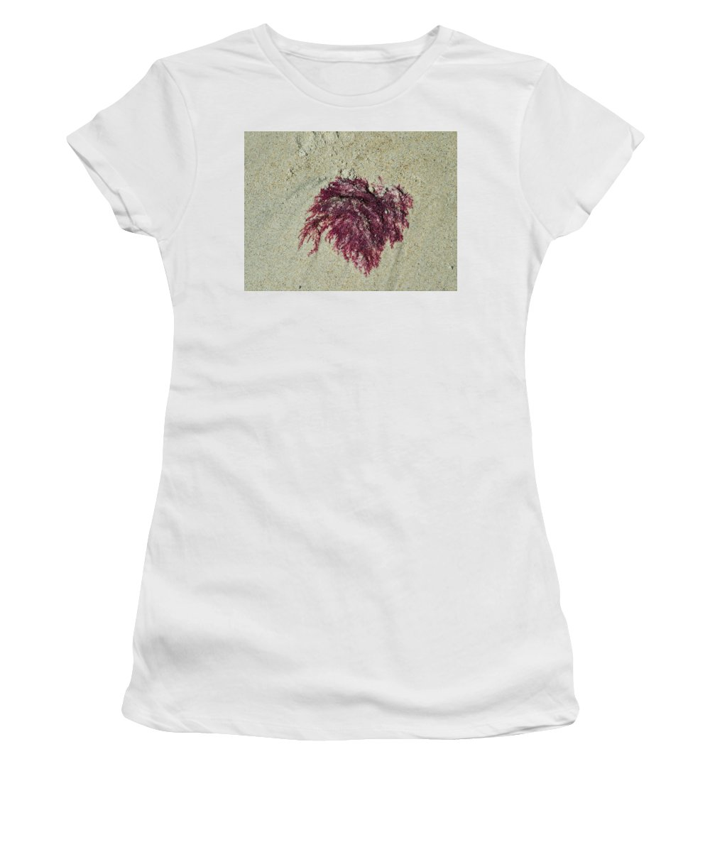 Beach Women's T-Shirt (Athletic Fit) featuring the photograph Red Seaweed by Geoffrey McLean