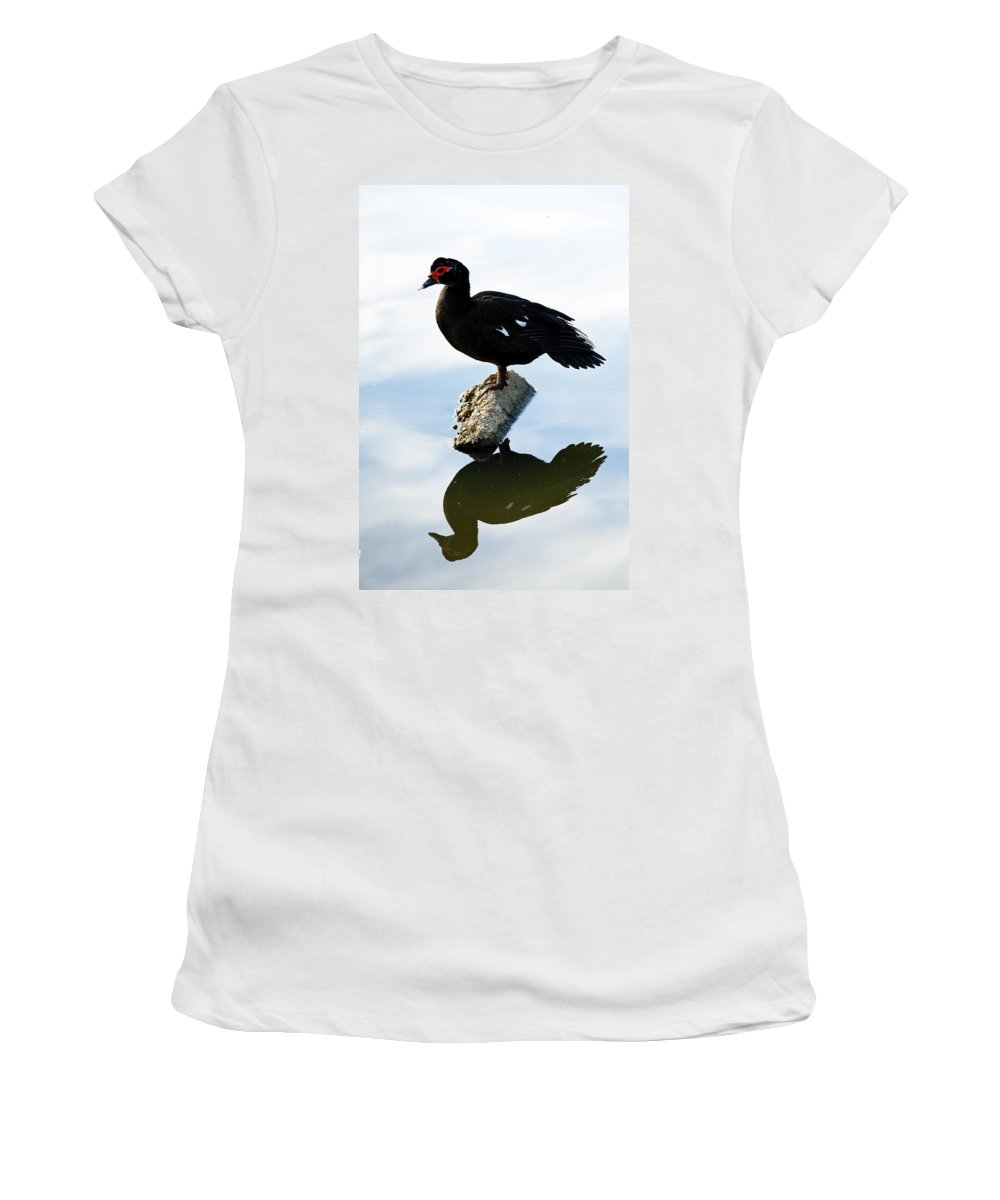 Bird Women's T-Shirt featuring the photograph Reflections by Susie Hoffpauir