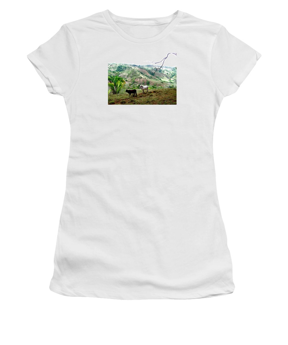 Cattle Women's T-Shirt (Athletic Fit) featuring the photograph Rolling Hills by Hilari Alsip