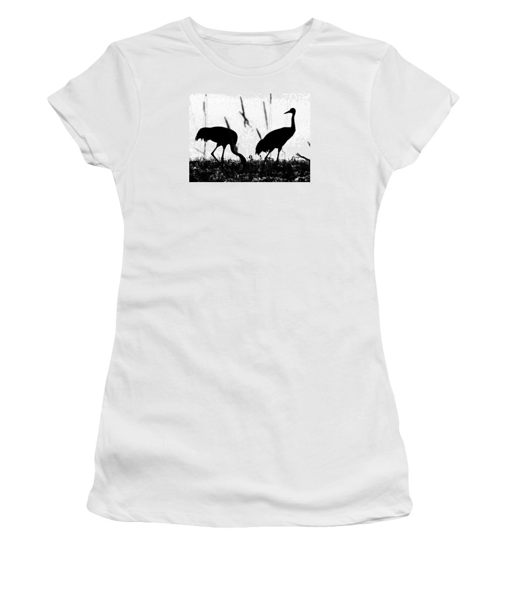 Cranes Women's T-Shirt (Athletic Fit) featuring the photograph Sandhill Cranes In Silhouette by Ron Tackett