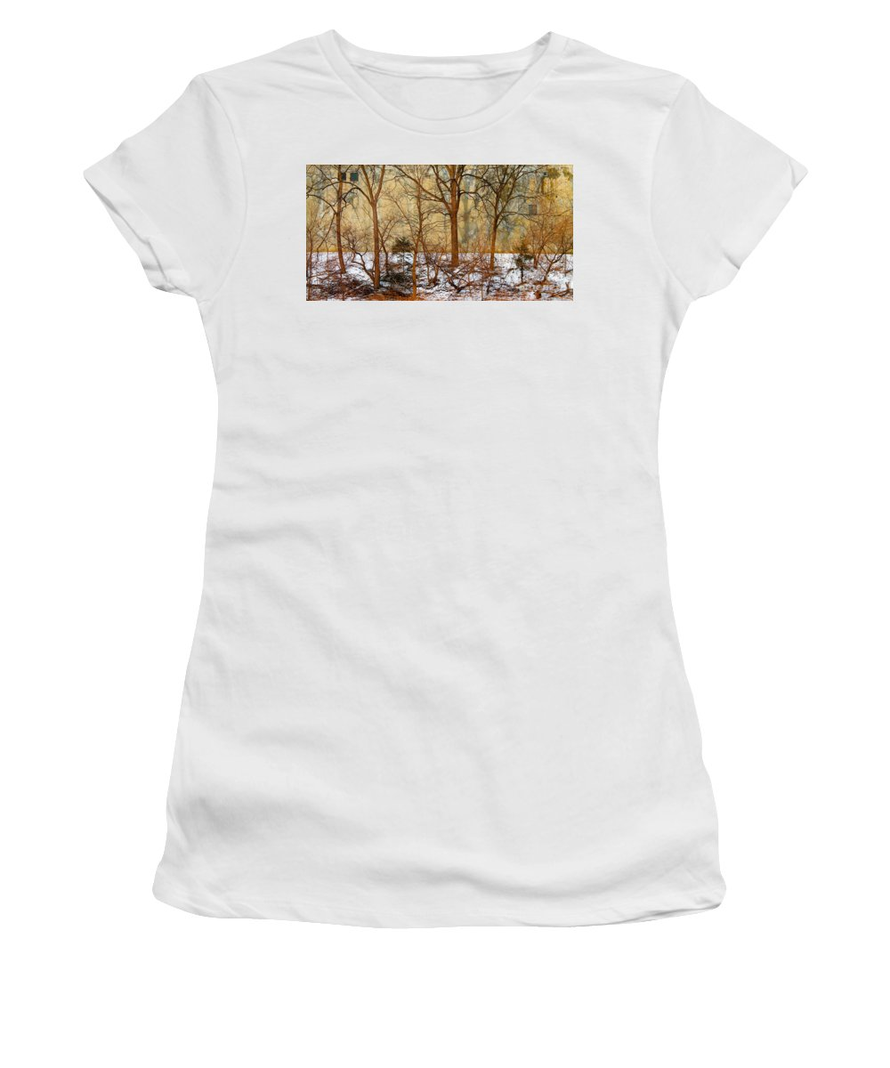 Trees Women's T-Shirt (Athletic Fit) featuring the photograph Shadows In The Urban Jungle by Nina Silver