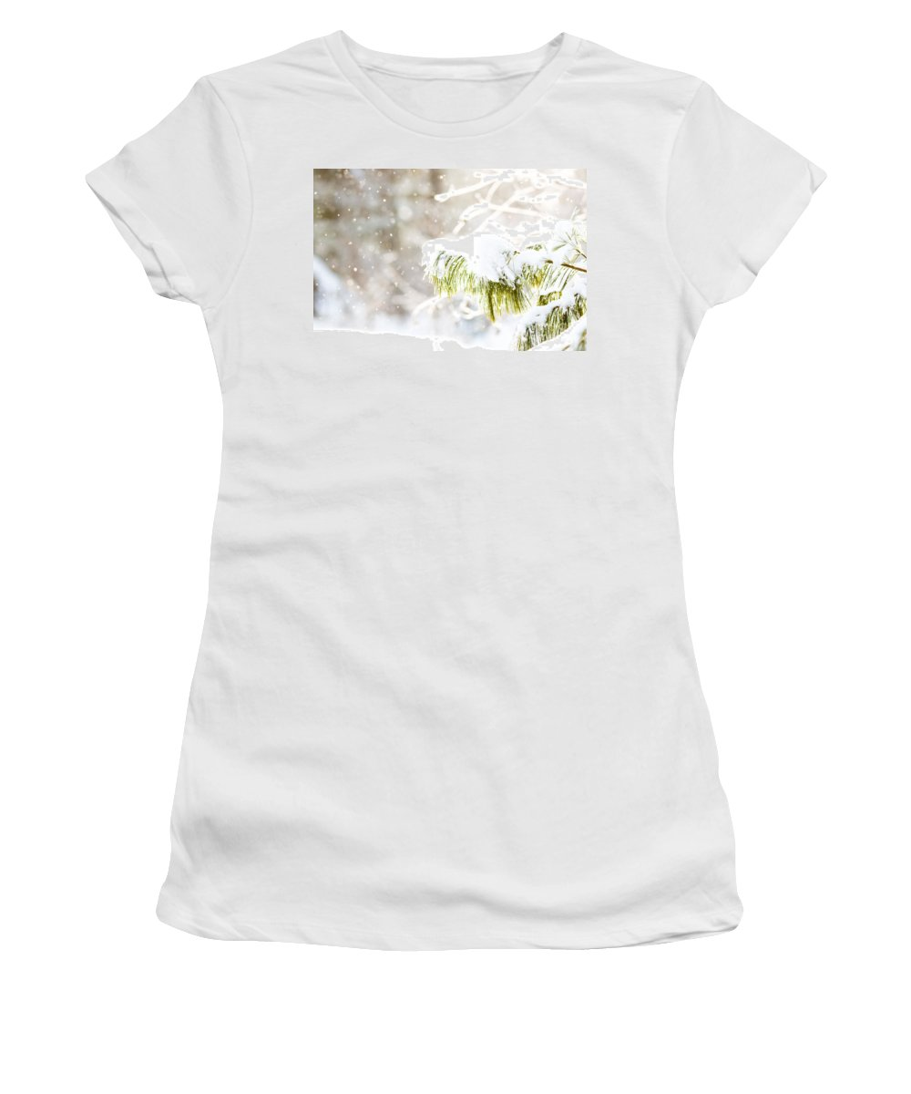 Women's T-Shirt (Athletic Fit) featuring the photograph Snowy Evergreen by Cheryl Baxter
