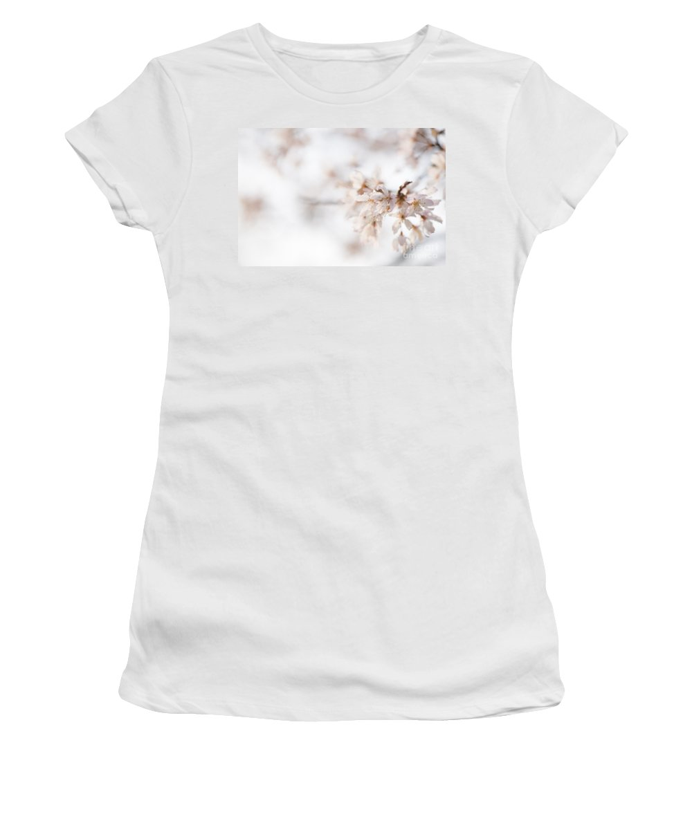 Art Women's T-Shirt featuring the photograph Softly Blossom by Anne Gilbert