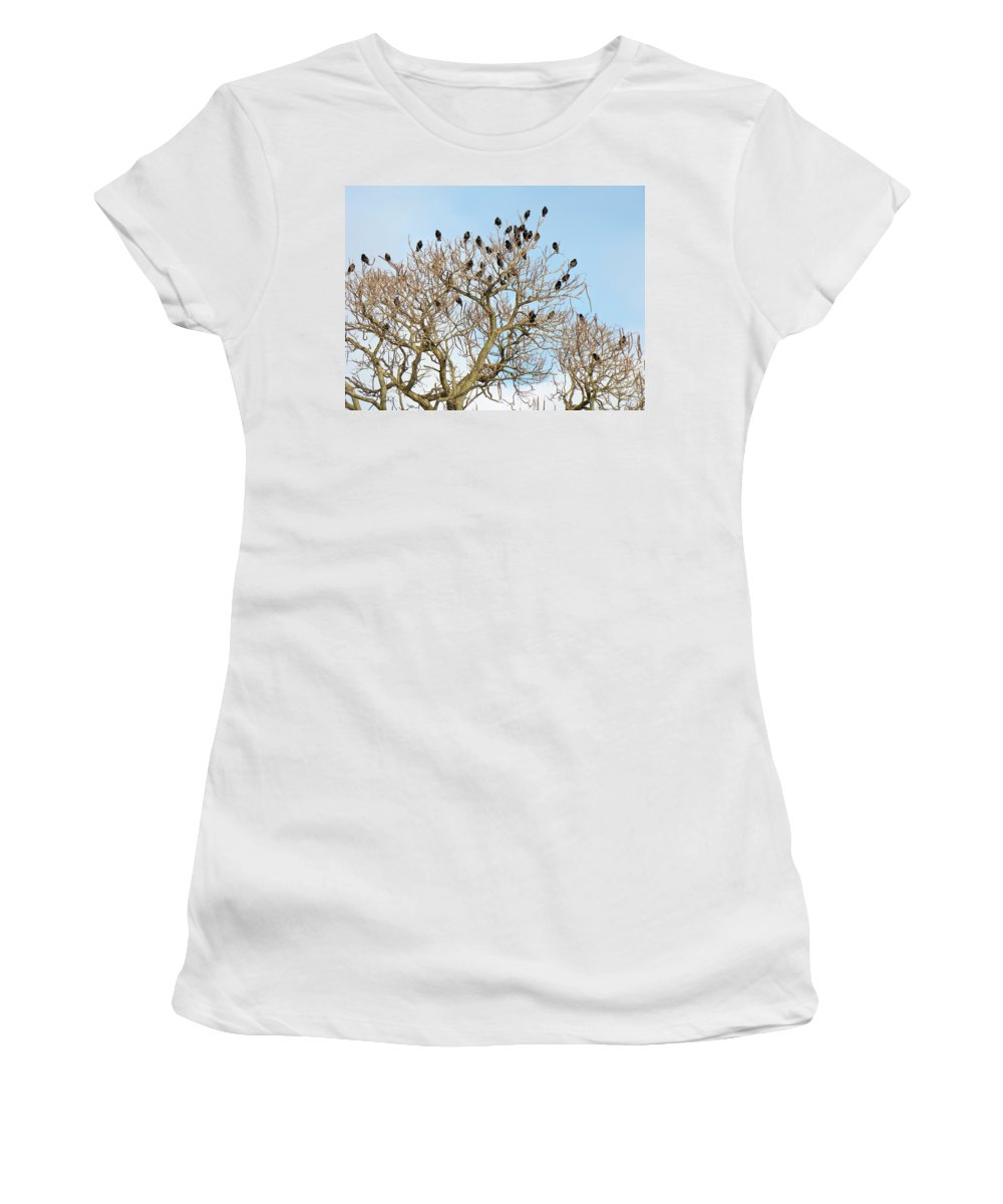 Starlings Women's T-Shirt (Athletic Fit) featuring the photograph Starlings For Leaves - Sturnus Vulgaris by Mother Nature