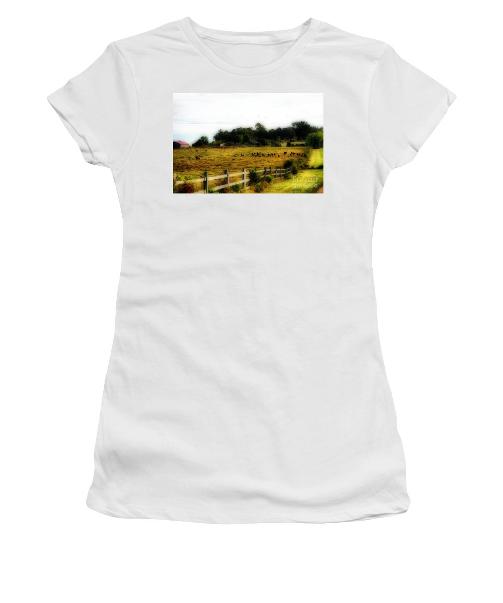 Scenic Tours Women's T-Shirt featuring the photograph Steaks On The Hoof by Skip Willits