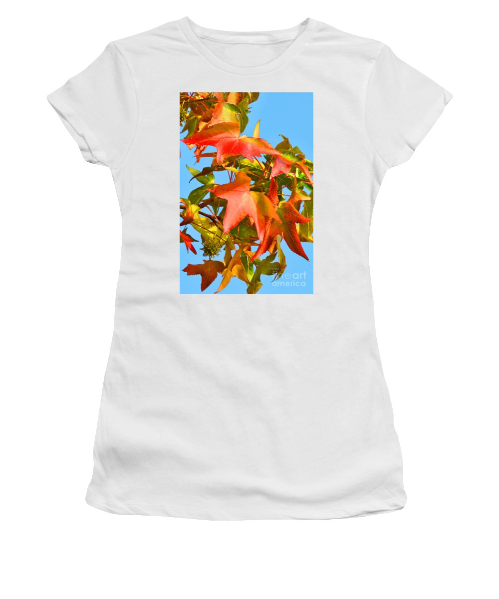 Sweetgum Tree Branch Women's T-Shirt (Athletic Fit) featuring the photograph Sweetgum Leaves In Autumn by Regina Geoghan