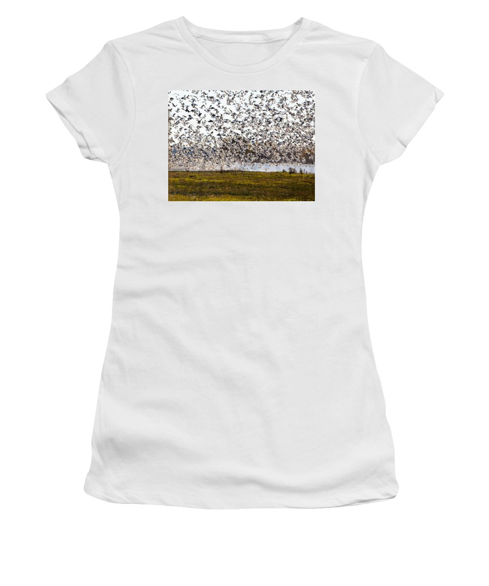 Wild- Life Women's T-Shirt featuring the photograph The Mass Jump by Brian Williamson