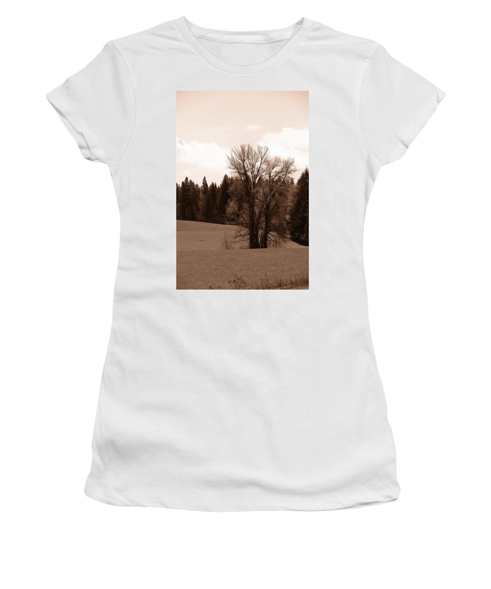 Oregon Women's T-Shirt (Athletic Fit) featuring the photograph Tree by Image Takers Photography LLC