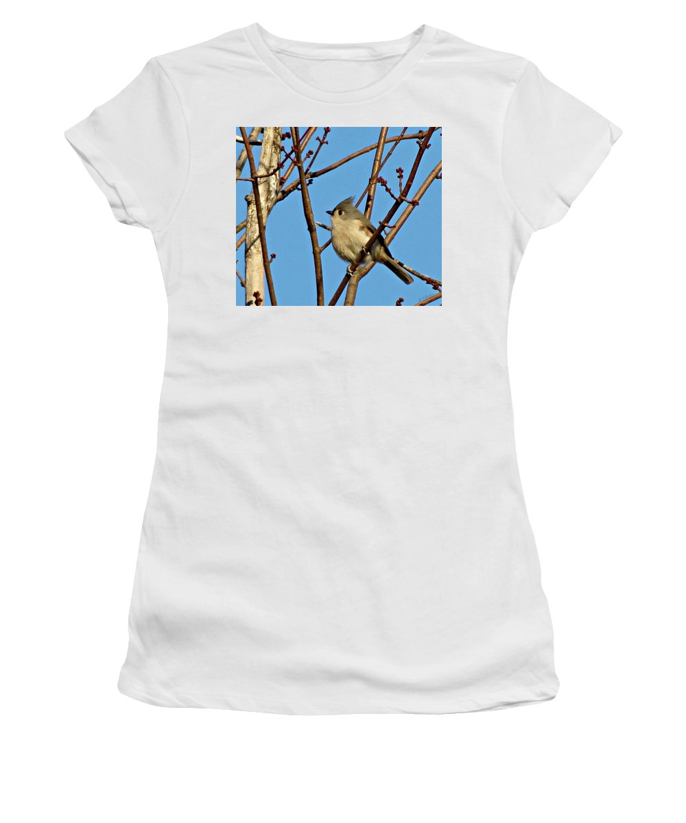 Tufted Titmouse Women's T-Shirt (Athletic Fit) featuring the photograph Tufted Titmouse by MTBobbins Photography