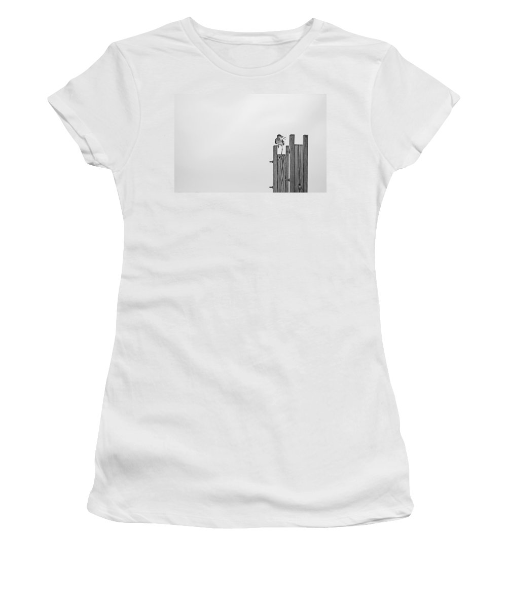 Bird Women's T-Shirt featuring the photograph Turn Around by Karol Livote