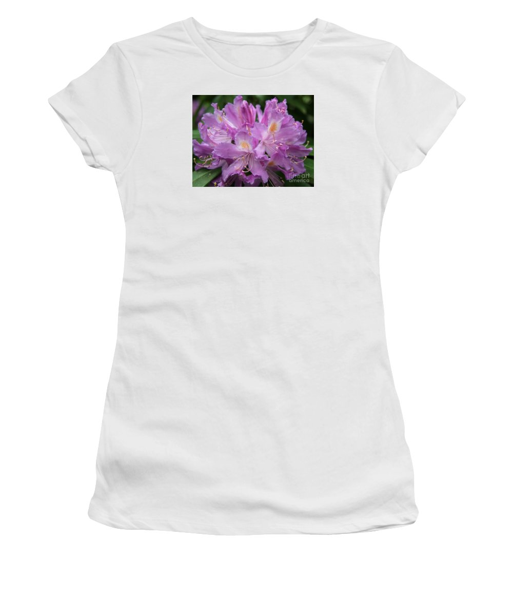 Rhododendron Women's T-Shirt (Athletic Fit) featuring the photograph Violet Pleasure by Christiane Schulze Art And Photography