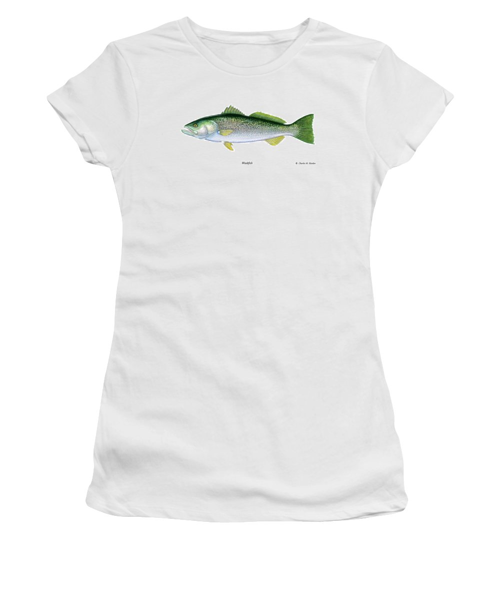 Charles Women's T-Shirt (Athletic Fit) featuring the painting Weakfish by Charles Harden