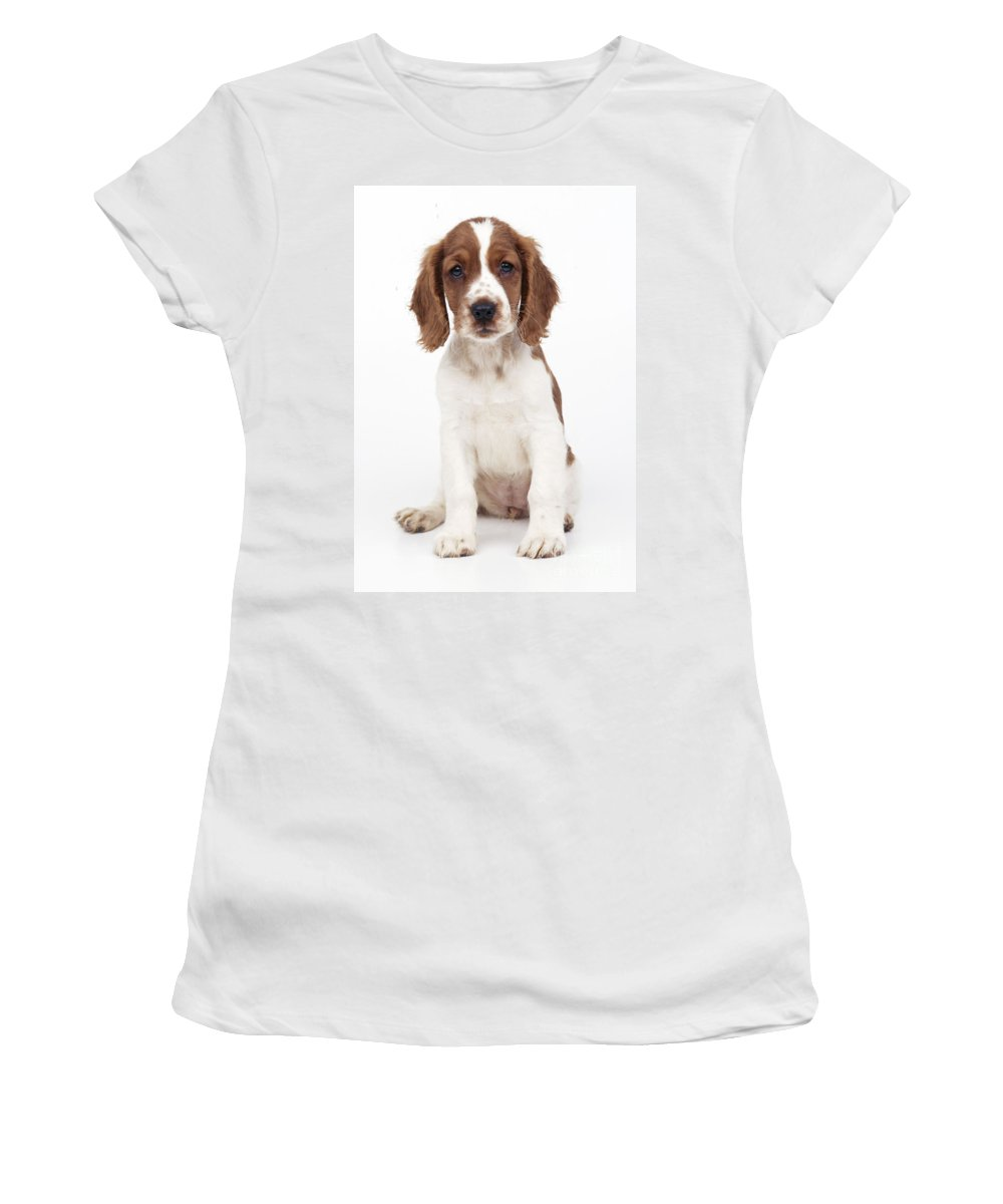 Welsh Springer Spaniel Women's T-Shirt (Athletic Fit) featuring the photograph Welsh Springer Spaniel Dog by John Daniels