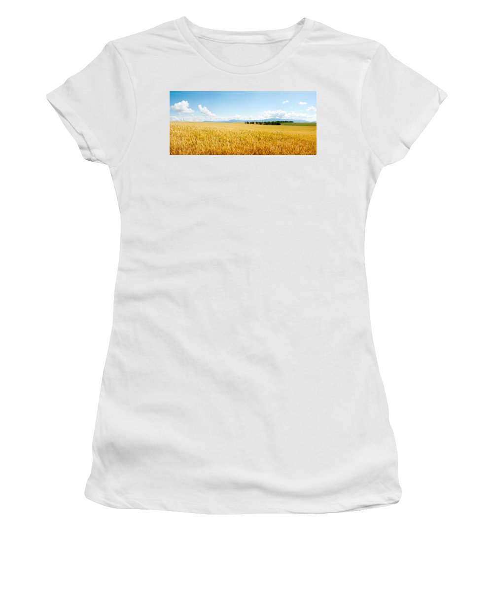 Photography Women's T-Shirt featuring the photograph Wheat Field Near D8, Brunet, Plateau De by Panoramic Images