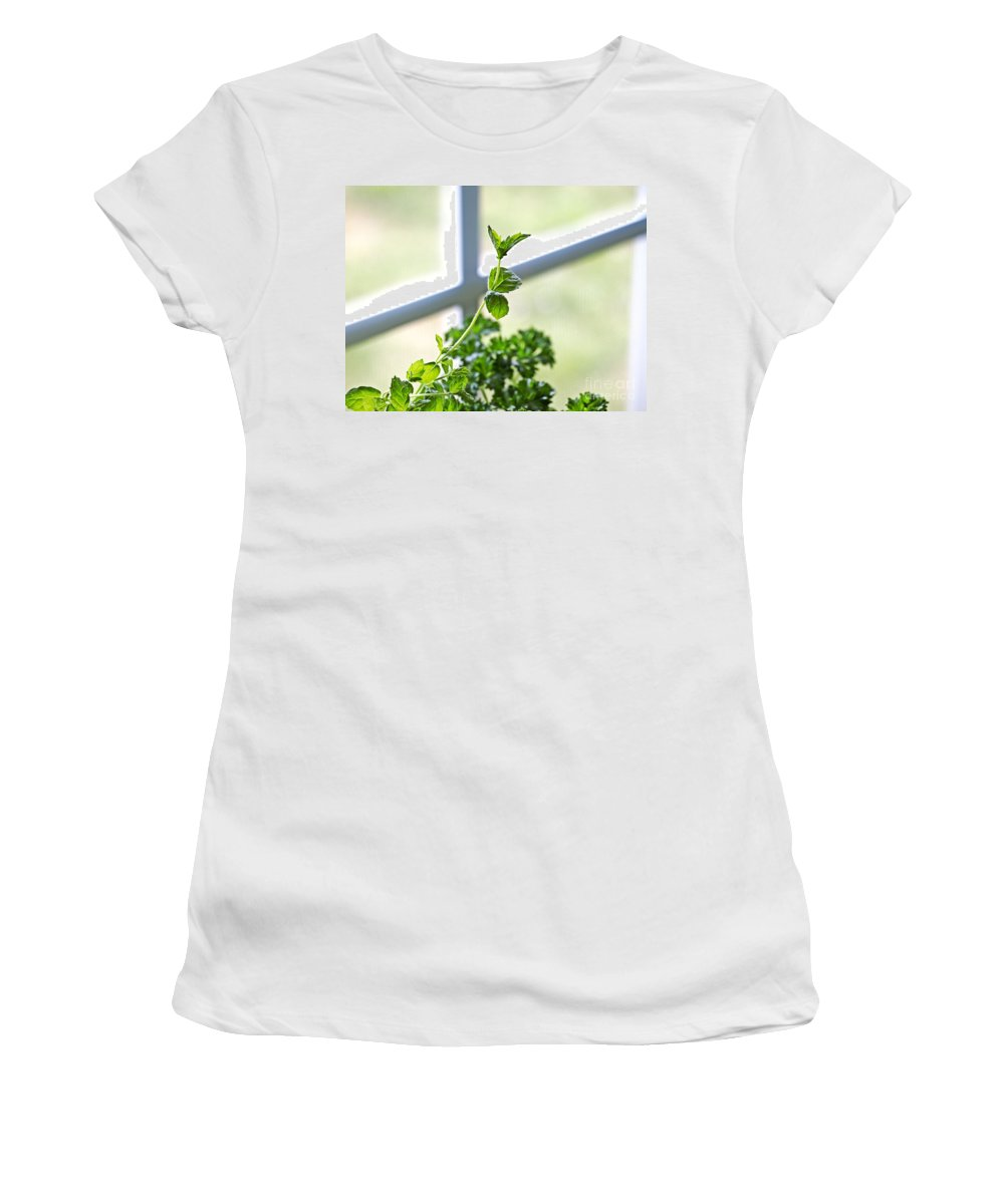 Herbs Women's T-Shirt featuring the photograph Window Herb Garden by Candy Frangella