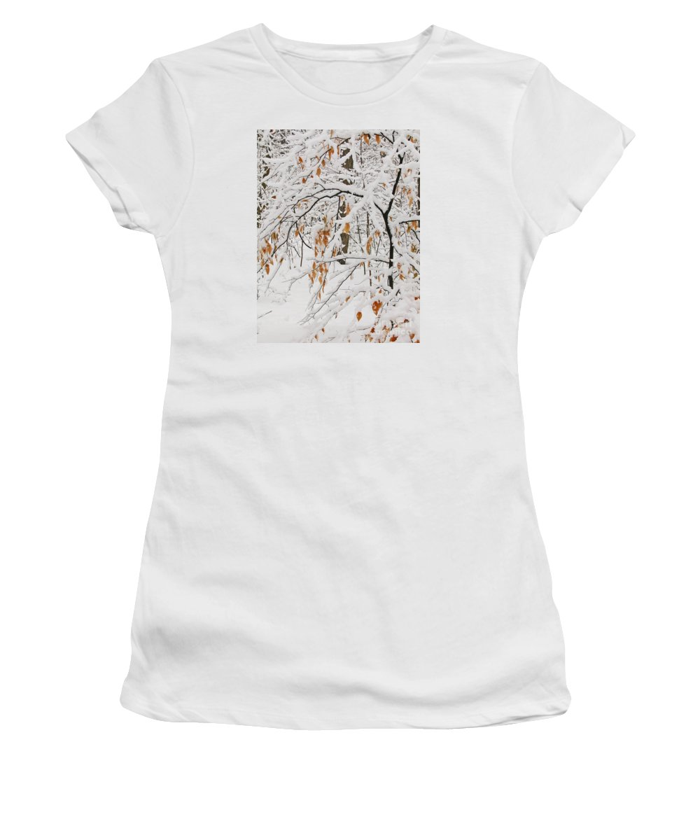 Winter Women's T-Shirt (Athletic Fit) featuring the photograph Winter Branches by Ann Horn