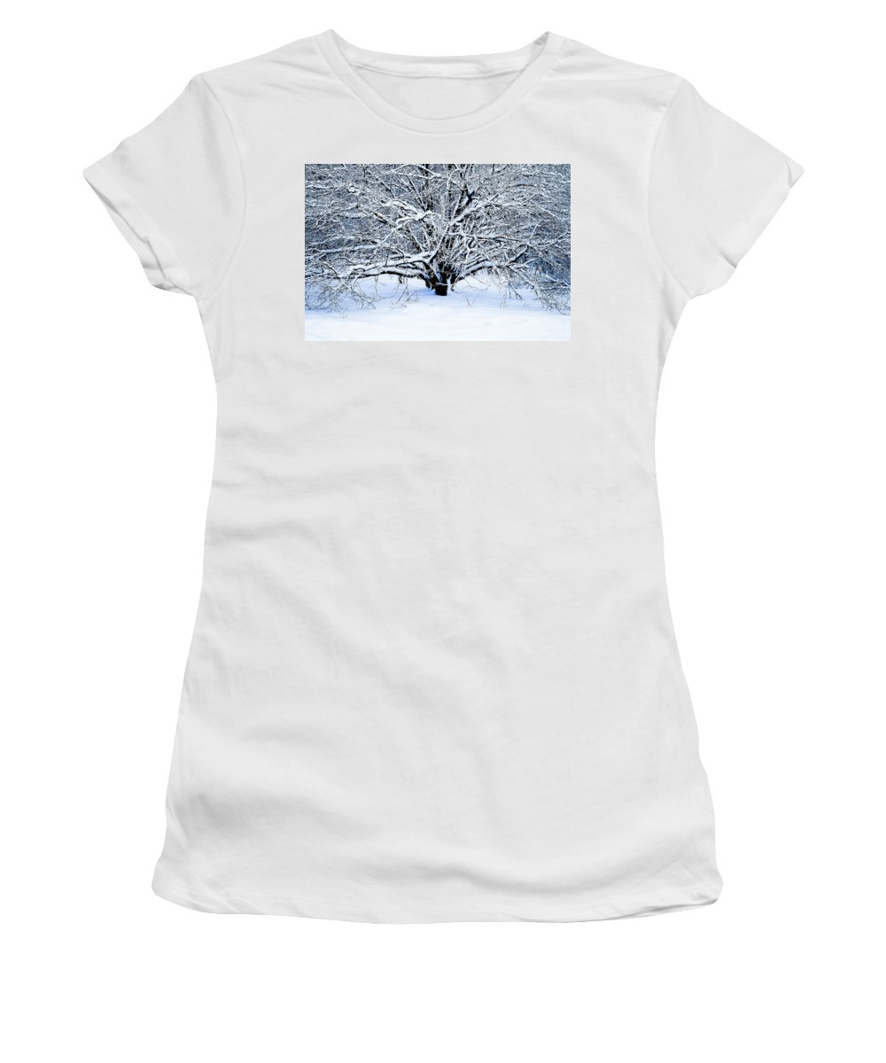 Tree Women's T-Shirt (Athletic Fit) featuring the photograph Winter Fresh by Alexander Senin