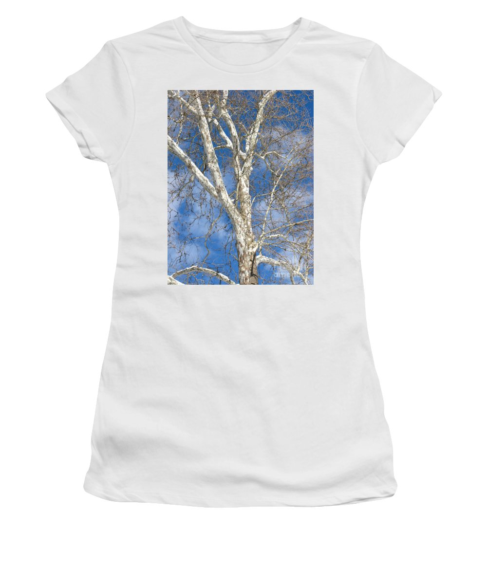 Winter Women's T-Shirt featuring the photograph Winter Sycamore by Ann Horn