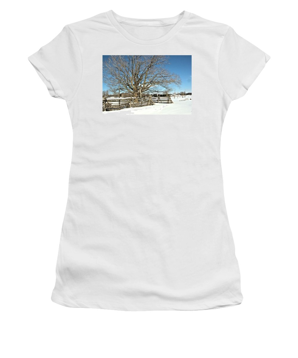 Landscape Women's T-Shirt (Athletic Fit) featuring the photograph Winter Tree And Fence by Valerie Kirkwood