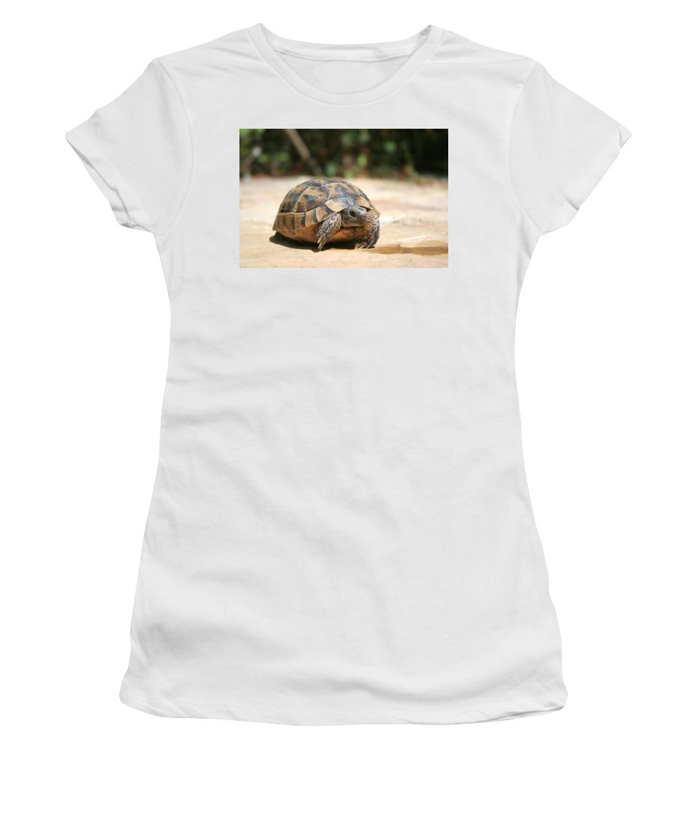 Tortoise Women's T-Shirt featuring the photograph Young Tortoise Emerging From Its Shell by Taiche Acrylic Art