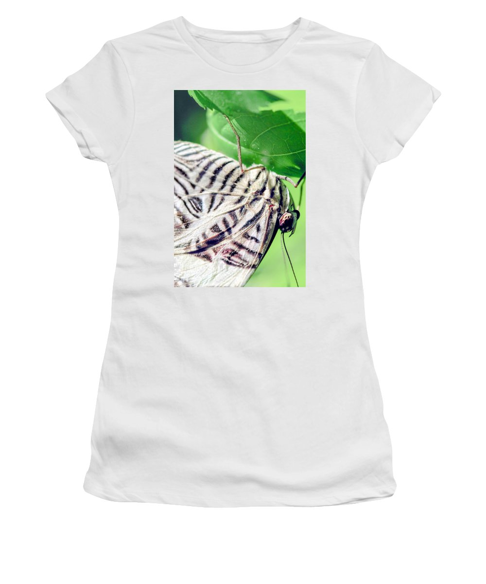 Optical Playground By Mp Ray Women's T-Shirt featuring the photograph Zebra Long-wing Close-up by Optical Playground By MP Ray
