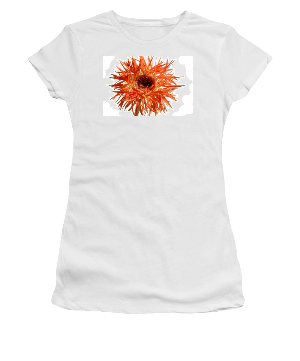 Gerbera Photographs Photographs Photographs Women's T-Shirt (Athletic Fit) featuring the photograph 0687c-005 by Kimberlie Gerner