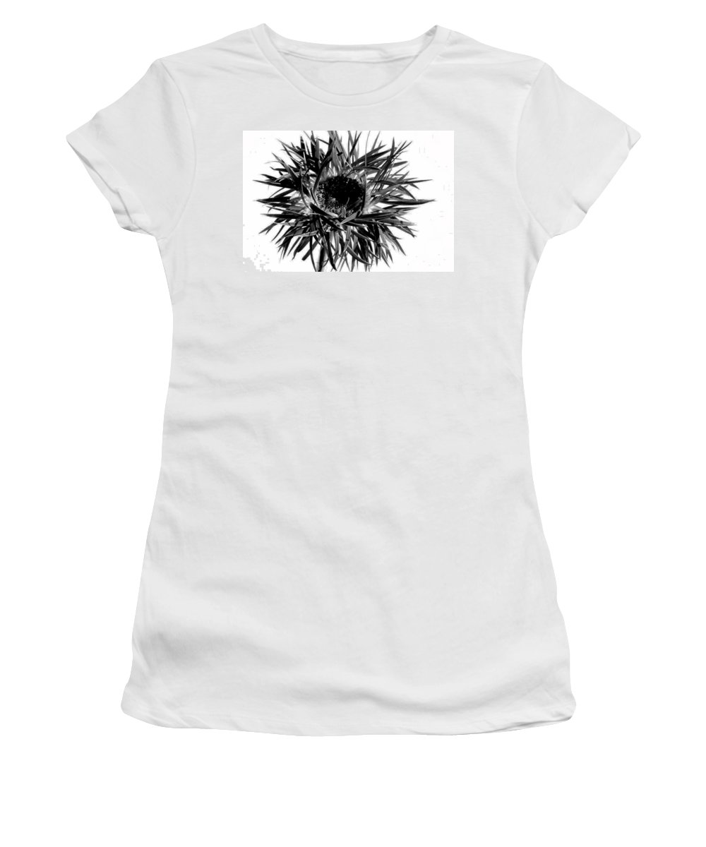 Gerbera Photographs Photographs Photographs Women's T-Shirt (Athletic Fit) featuring the photograph 0687c-008 by Kimberlie Gerner
