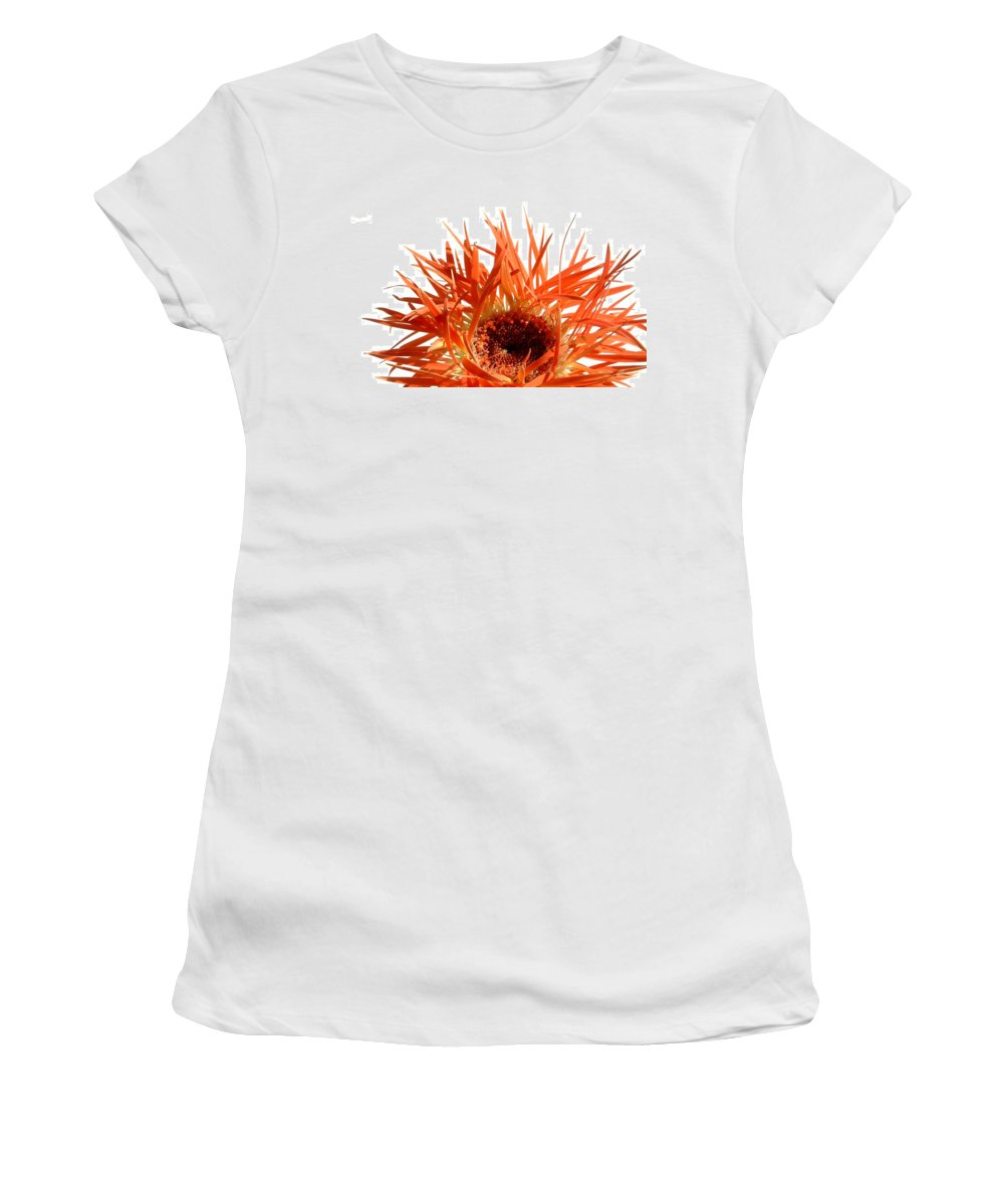 Gerbera Photographs Women's T-Shirt featuring the photograph 0687c-019 by Kimberlie Gerner
