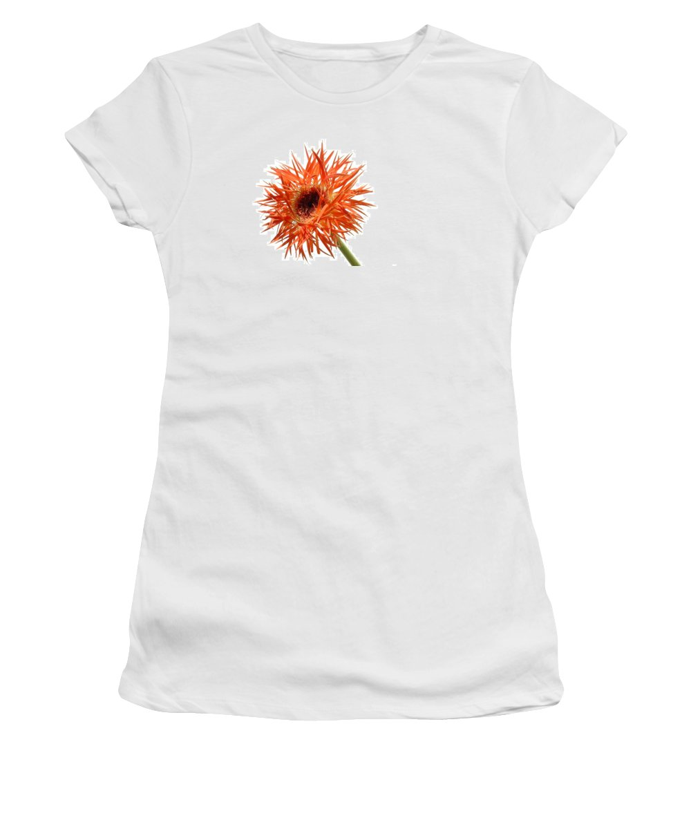Gerbera Photographs Women's T-Shirt featuring the photograph 0688c-001 by Kimberlie Gerner