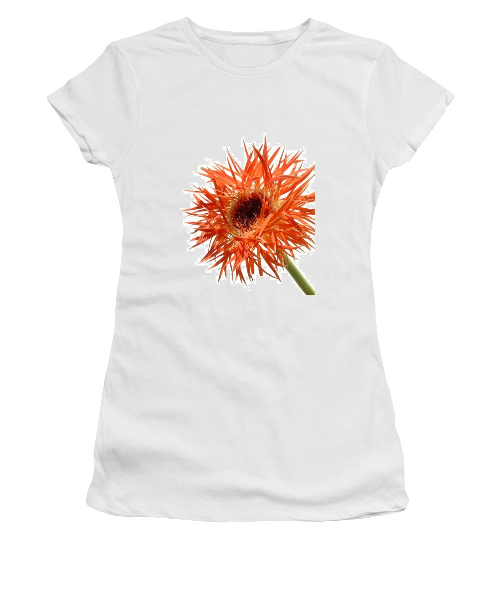 Gerbera Photographs Women's T-Shirt featuring the photograph 0688c-003 by Kimberlie Gerner