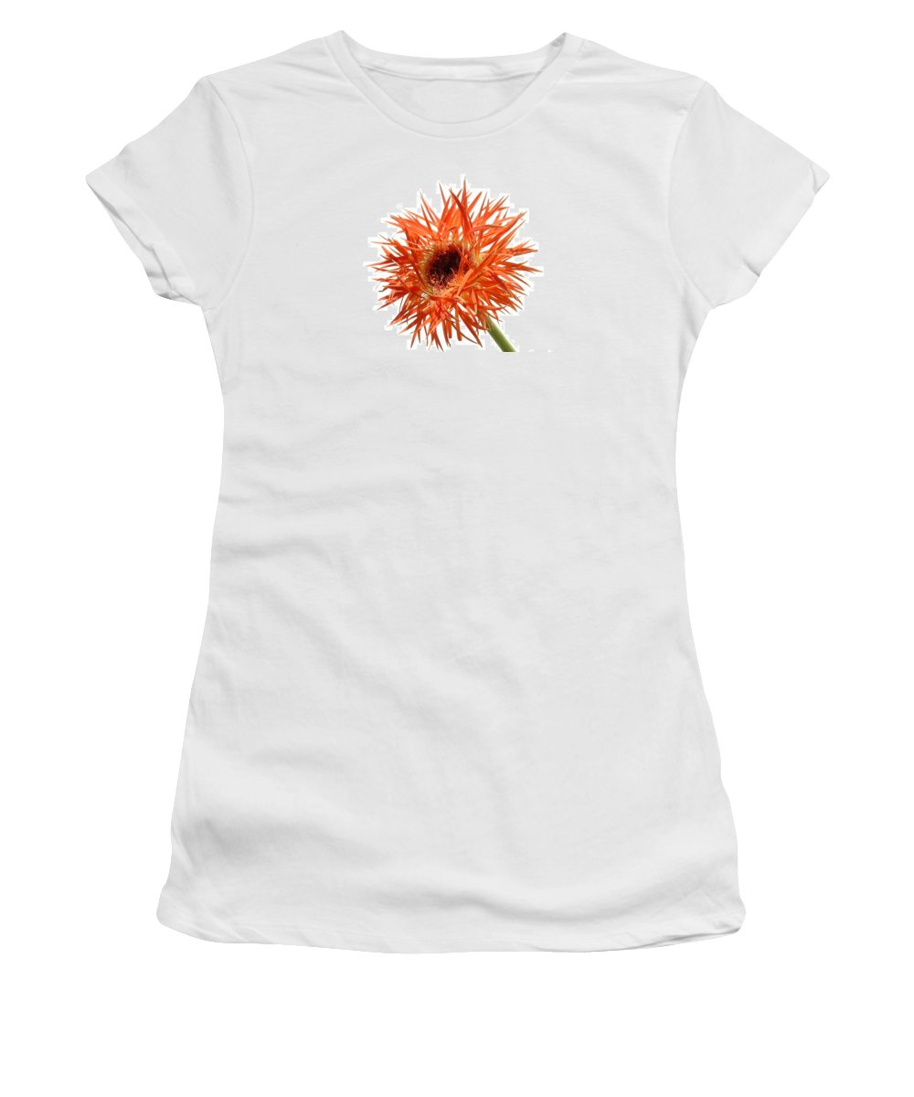 Gerbera Photographs Women's T-Shirt featuring the photograph 0688c-009 by Kimberlie Gerner