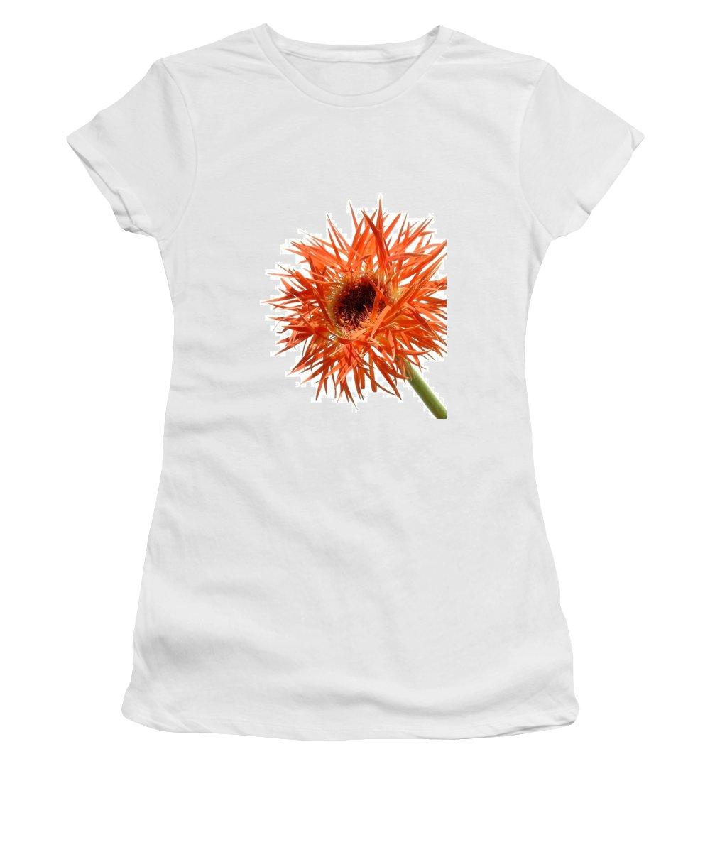 Gerbera Photographs Women's T-Shirt featuring the photograph 0688c-010 by Kimberlie Gerner