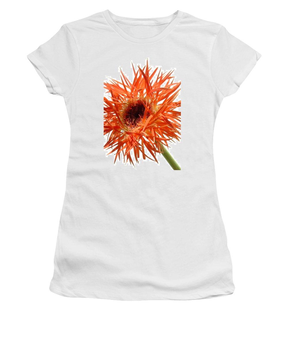 Gerbera Photographs Women's T-Shirt featuring the photograph 0688c-011 by Kimberlie Gerner
