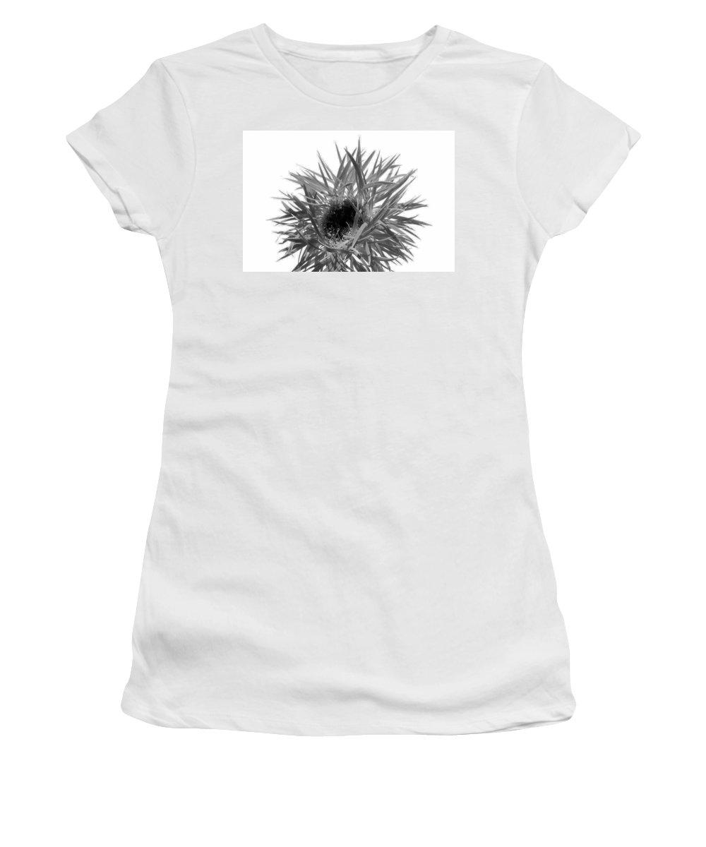 Gerbera Photographs Women's T-Shirt featuring the photograph 0688c-022 by Kimberlie Gerner