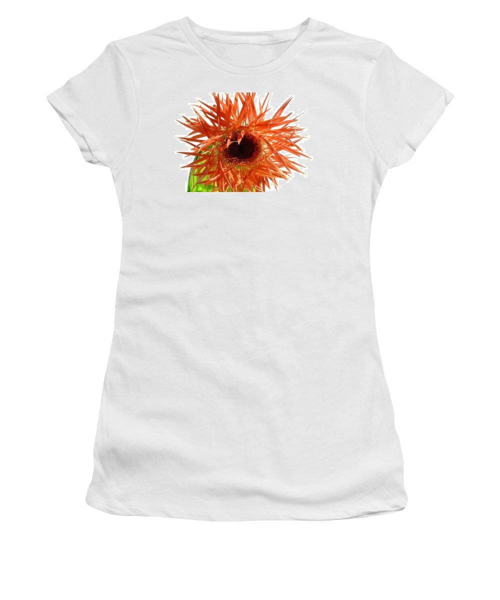 Gerbera Photographs Women's T-Shirt featuring the photograph 0690c-024 by Kimberlie Gerner