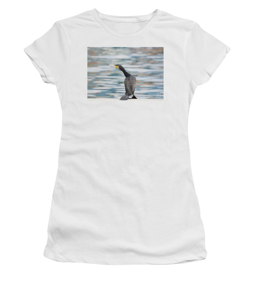 Cormorant Women's T-Shirt (Athletic Fit) featuring the photograph Cormorant Bird by Mats Silvan