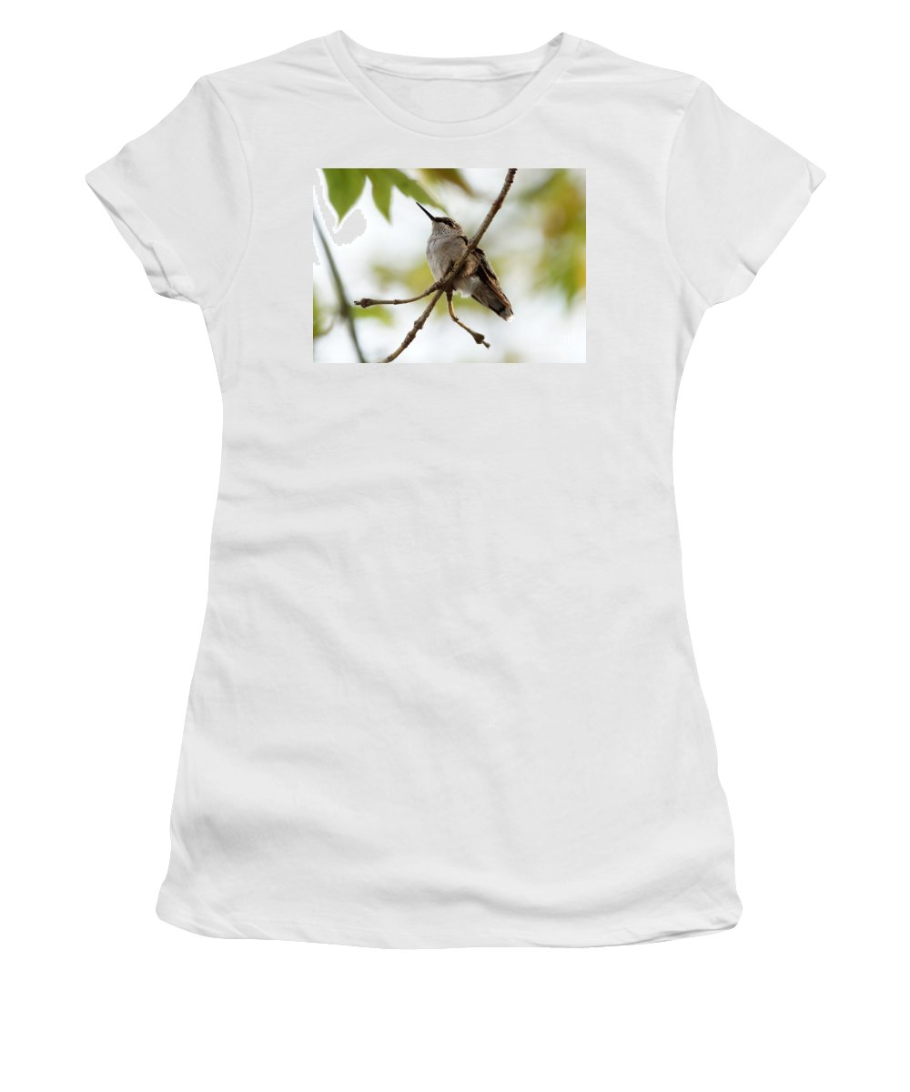 Birds Women's T-Shirt (Athletic Fit) featuring the photograph Hummingbird by Lori Tordsen