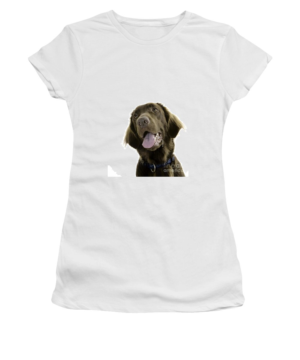 Pet Women's T-Shirt (Athletic Fit) featuring the photograph Lilly by Angel Ciesniarska