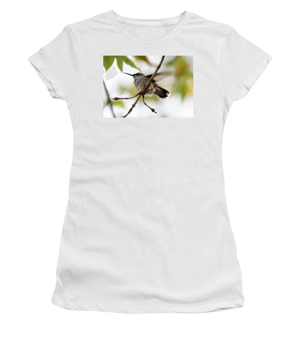 Birds Women's T-Shirt (Athletic Fit) featuring the photograph Hummingbird by Lori Tordsen