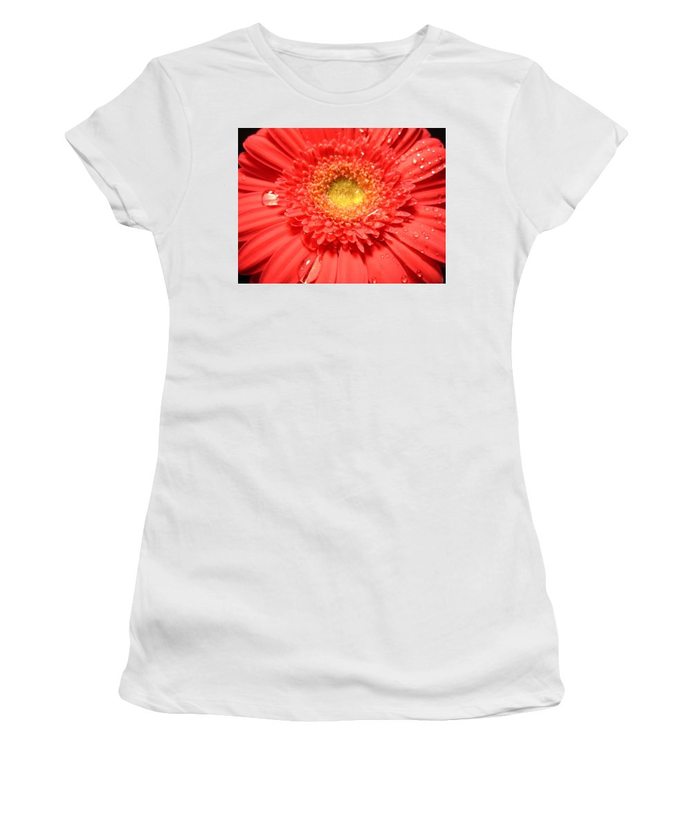 Gerbera Photographs Photographs Photographs Women's T-Shirt (Athletic Fit) featuring the photograph 3258c by Kimberlie Gerner